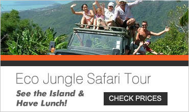 Eco Safari Tour